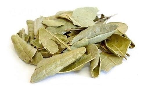Boldo pra Chá - 500 g