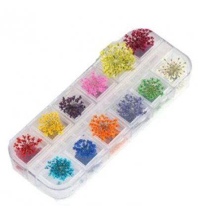 Flores secas para decoração de unhas - caixa com 12 tipos