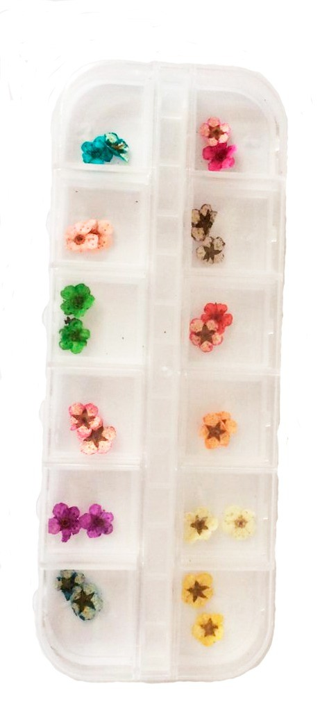 Flores secas para decoração de unhas fan nails - caixa com 12 tipos