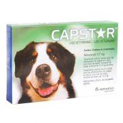 Antipulgas Capstar para Cães acima de 11kg (6 comprimidos) - Elanco