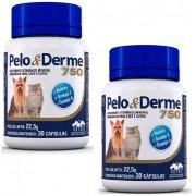 Kit 2 Unidades Suplemento Vitaminico Pelo & Derme 750 (45g/60 Capsulas) - Vetnil