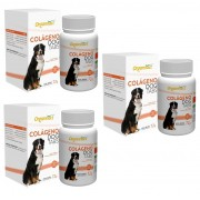 Kit 3 Unidades Suplemento para Cães Colágeno Dog Tabs 72g (60 tabletes) - Organnact