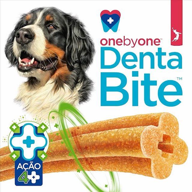 Stick OneByOne Denta Bite para cães de 5-20kg - Spin