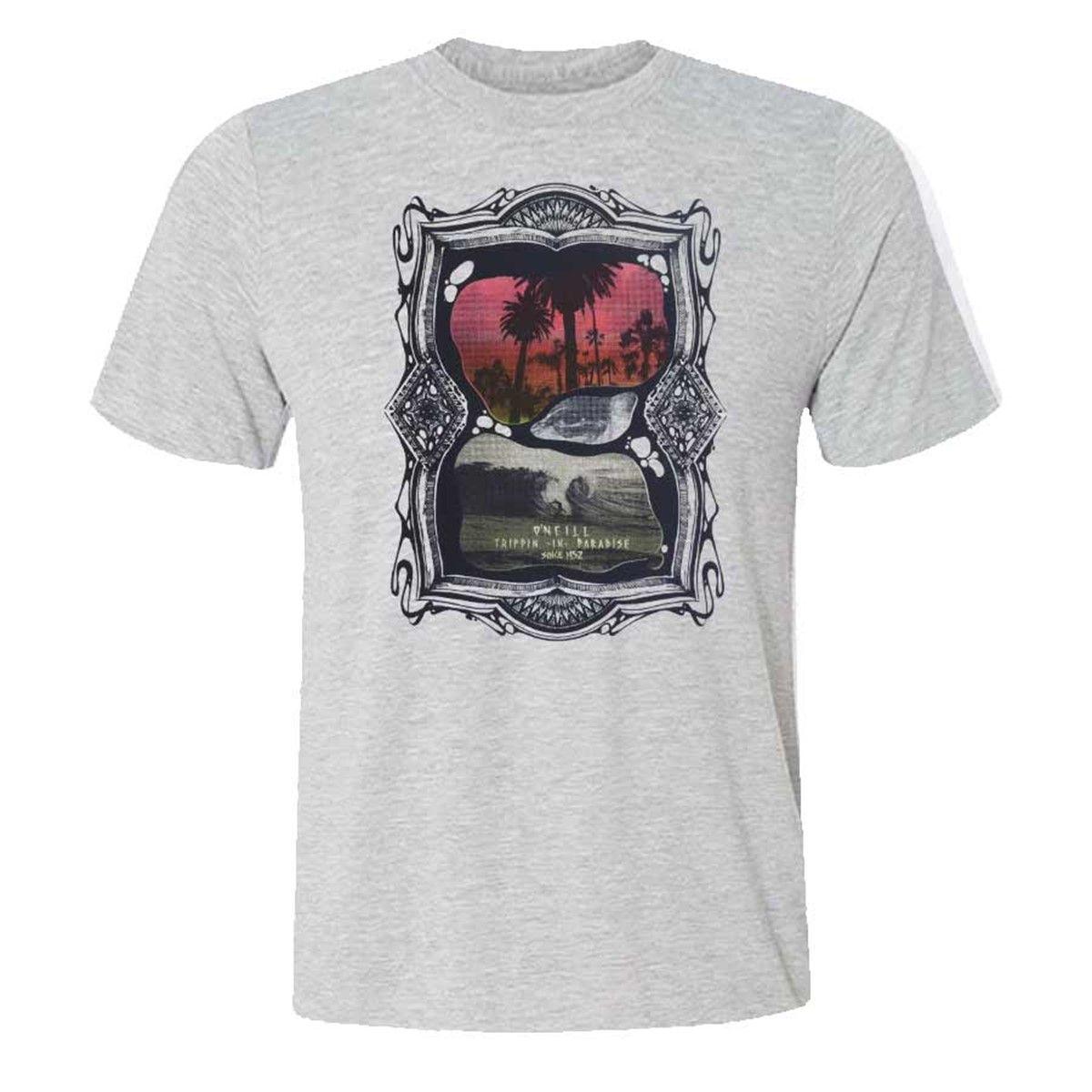 Camiseta O'Neill Apocalypse Mescla Grey