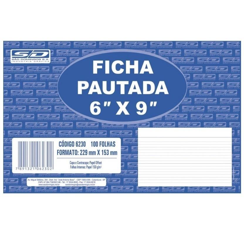 FICHA PAUTADA 6X9 C 100 FLS
