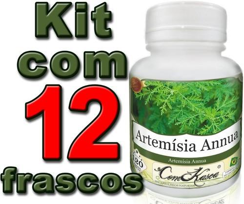 12 Frascos De Artemisia Annua (anua) 120 Cáps