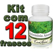 12 Frascos De Artemisia Annua (anua)
