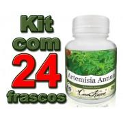 24 Frascos De Artemisia Annua (anua)