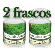 2 Frascos De Artemisia Annua (anua)