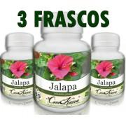 3 Frascos = 180 Cápsulas De Jalapa - Cicatrizante