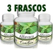 3 Frascos De Alfavaca - Saúde Do Coração