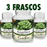 3 Frascos De Angelica - Diminui A Ansiedade