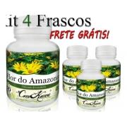 4 Flor Do Amazonas