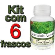 6 Frascos De Artemisia Annua (anua) 120 Cáps