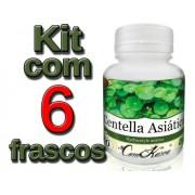 6 Frascos De Centella Asiática - 360 Cápsulas