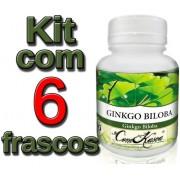 6 Frascos De Ginkgo Biloba