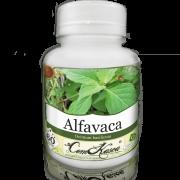 Alfavaca ComKasca 60 caps