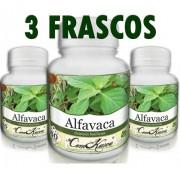 Kit 3 Frascos De Alfavaca 60 Cp Cada Frasco