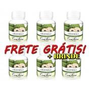 Kit 6 Frascos Graviola (100% Puro)