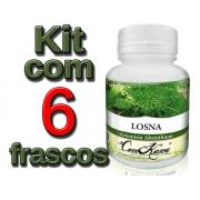 Losna - 6 potes de 60 cápsulas