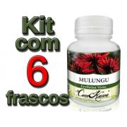 Mulungu - 6 potes de 60 cápsulas