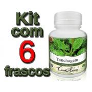 Tanchagem - 6 potes com 60 cápsulas