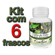 Unha De Gato e Uxi Amarelo - 6 potes com 60 cápsulas
