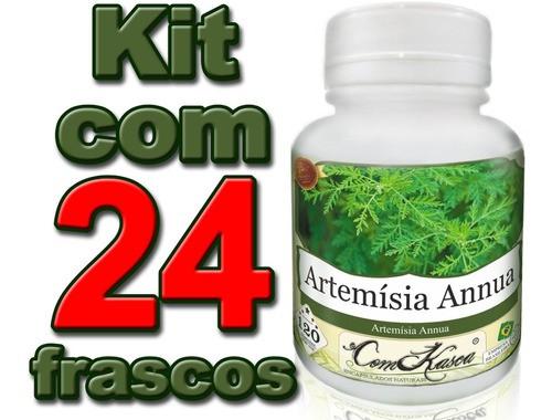 24 Frascos De Artemisia Annua (anua) 120 Cáps