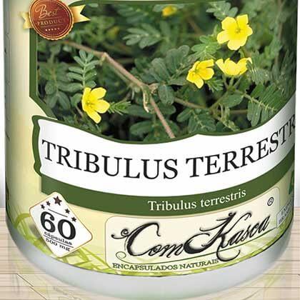 Tribulus Terrestris ComKasca 60 caps