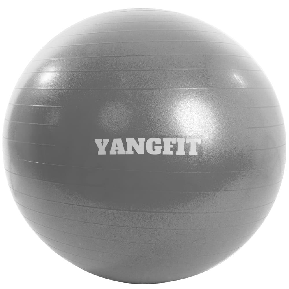 Bola de Pilates 75cm Com Bomba de Ar