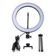 Iluminação Ring Light Profissional 26cm Led Usb Kit Youtuber