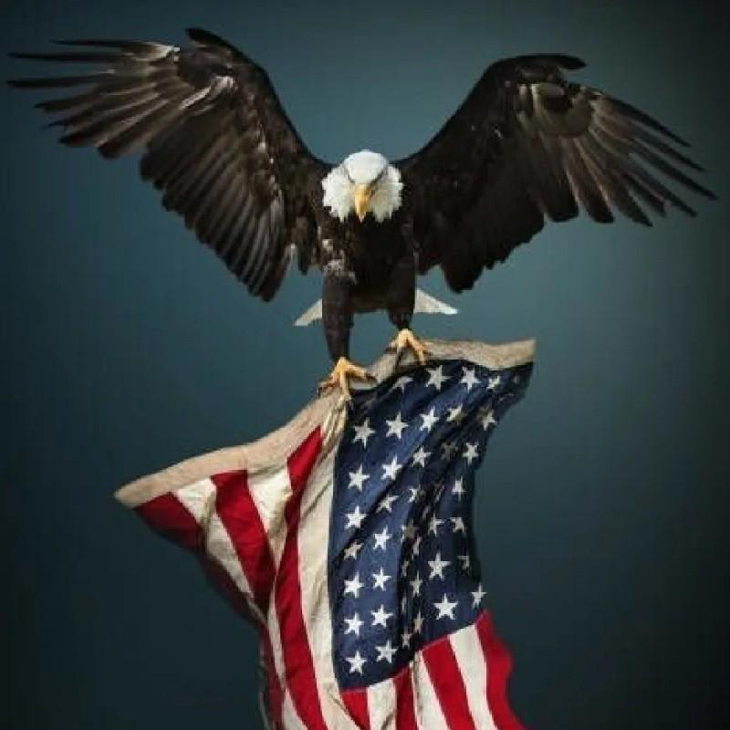 Anel Masculino Militar Águia Americana Forças Armadas Do Eua