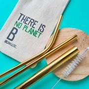 Kit 5 em 1-3 Canudos de Inox + Escova + Ecobag (Shake 8mm) Dourado - Planet B