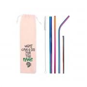 Kit 6 em 1 - 4 Canudos de Inox Colorido (Shake 12mm) + Escova + Ecobag