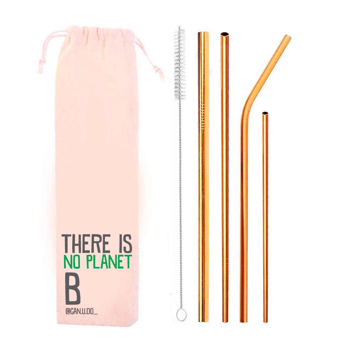 Kit 6 em 1- 4 Canudos de Inox Dourado + Escova + Ecobag Planet B (Shake 8mm)