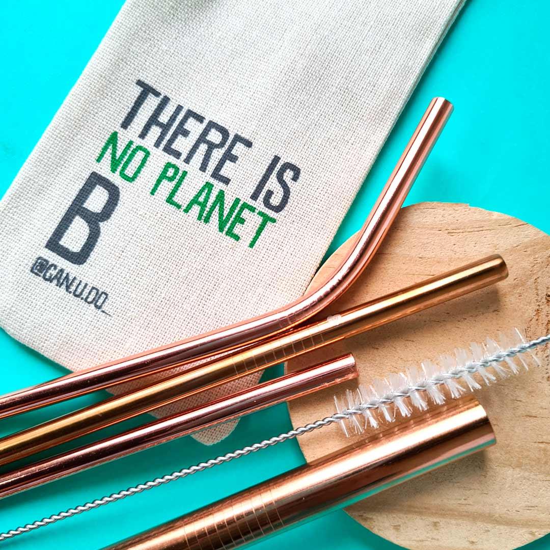 Kit 6 em 1- 4 Canudos de Inox Rose Gold + Escova + Ecobag Planet B (Shake 8mm)