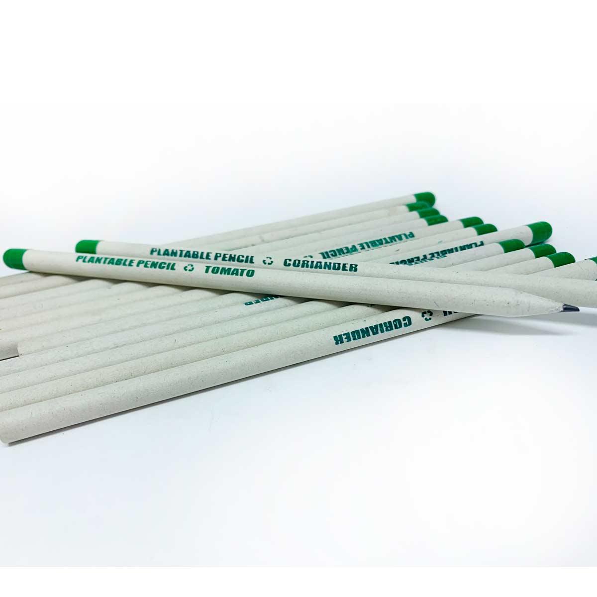Lápis Plantável