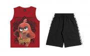 Conjunto Infantil Menino Angry Birds