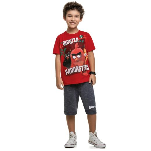 Conjunto Infantil Menino Angry Birds Tam 8