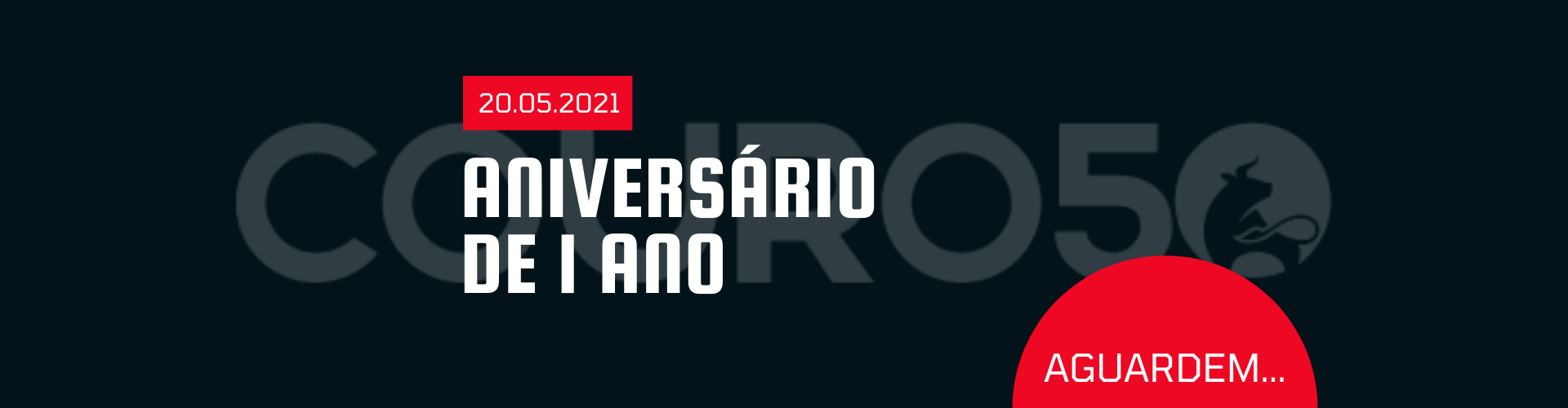 COURO50 CARTEIRA PROTEÇÃO RFID 620