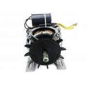 Motor recondicionado compatível tanquinho Clara 127v