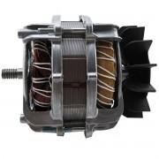Motor tanquinho New Maq New UP12 220V