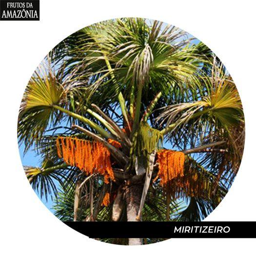 Caixa Agarradinhos de Miriti  - Frutos da Amazônia