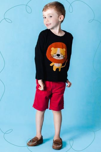 Sweater Leão Kids