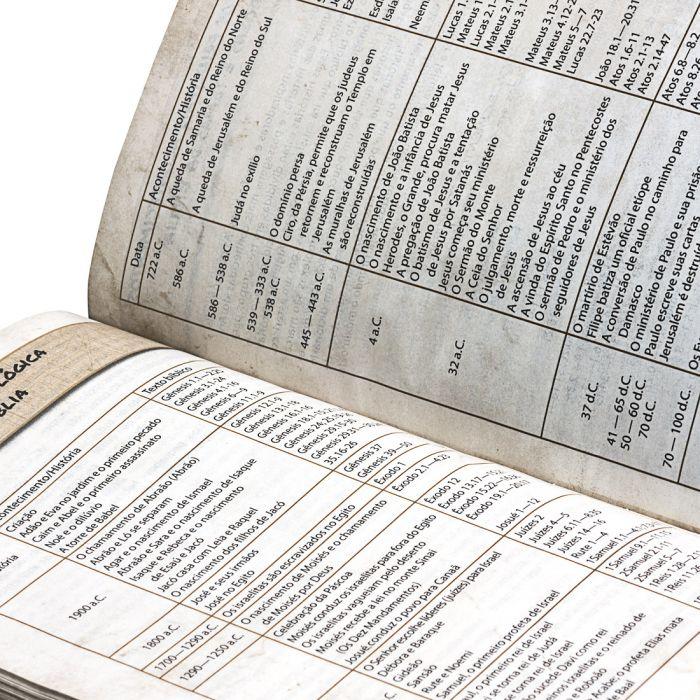 Bíblia das Descobertas para Adolescentes - marrom