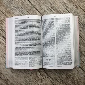 Bíblia de Estudo Joyce Meyer - Abstrata - NVI
