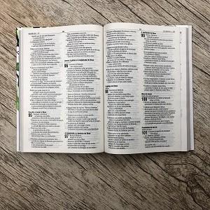 Bíblia Sagrada - A sua Lei - NAA - Letra Normal