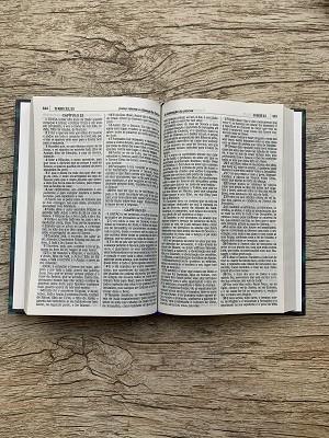 Bíblia Sagrada - ACF - Letra Média - Capa Dura - Leão Aslam