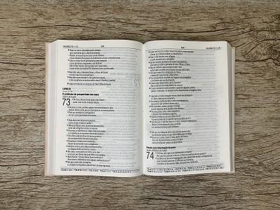 Bíblia Sagrada Feminina - Letra Grande - NAA - Tua Graça
