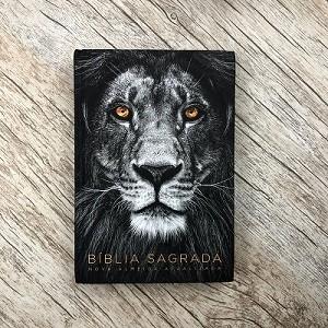 Bíblia Sagrada - Leão Cinza - NAA - Letra Normal